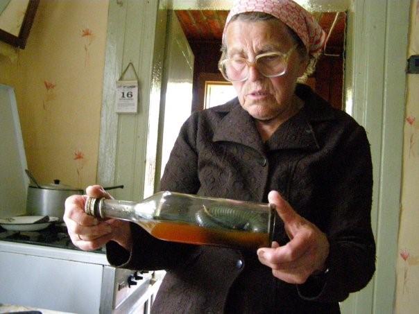 Snake in the bottle